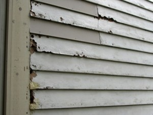Rotting or Warping Siding